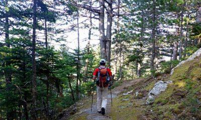 Δράσεις Νοεμβρίου για την πεζοπορική και ορειβατική ομάδα του Ευκλή Καλαμάτας 25