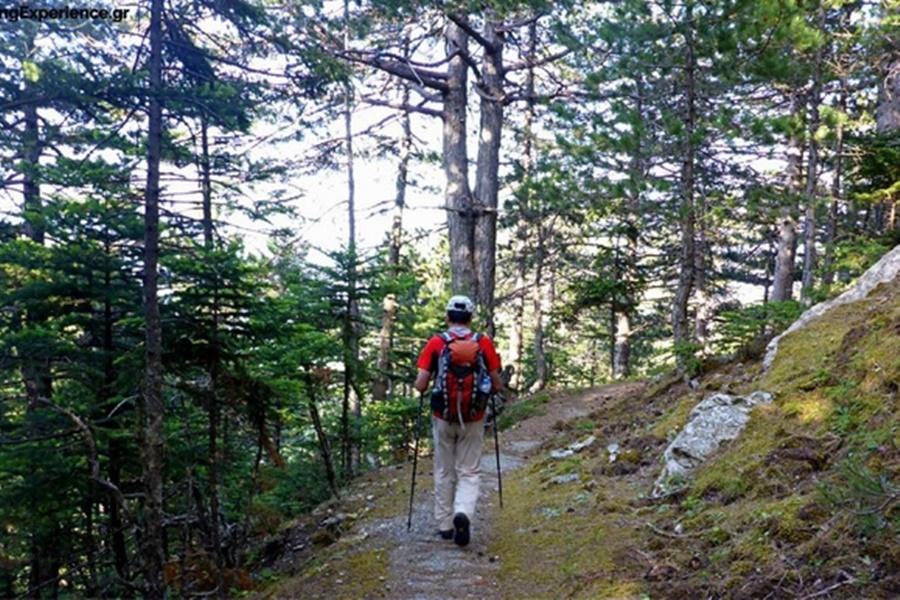 Δράσεις Νοεμβρίου για την πεζοπορική και ορειβατική ομάδα του Ευκλή Καλαμάτας 8