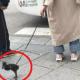 Lockdown:  Αρχίσαμε... Γυναίκα έβγαλε βόλτα την πάπια της (βιντεο) 9